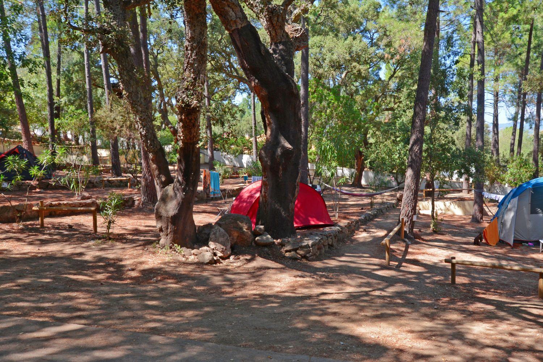campsite find out our accommodation in porto vecchio. Black Bedroom Furniture Sets. Home Design Ideas